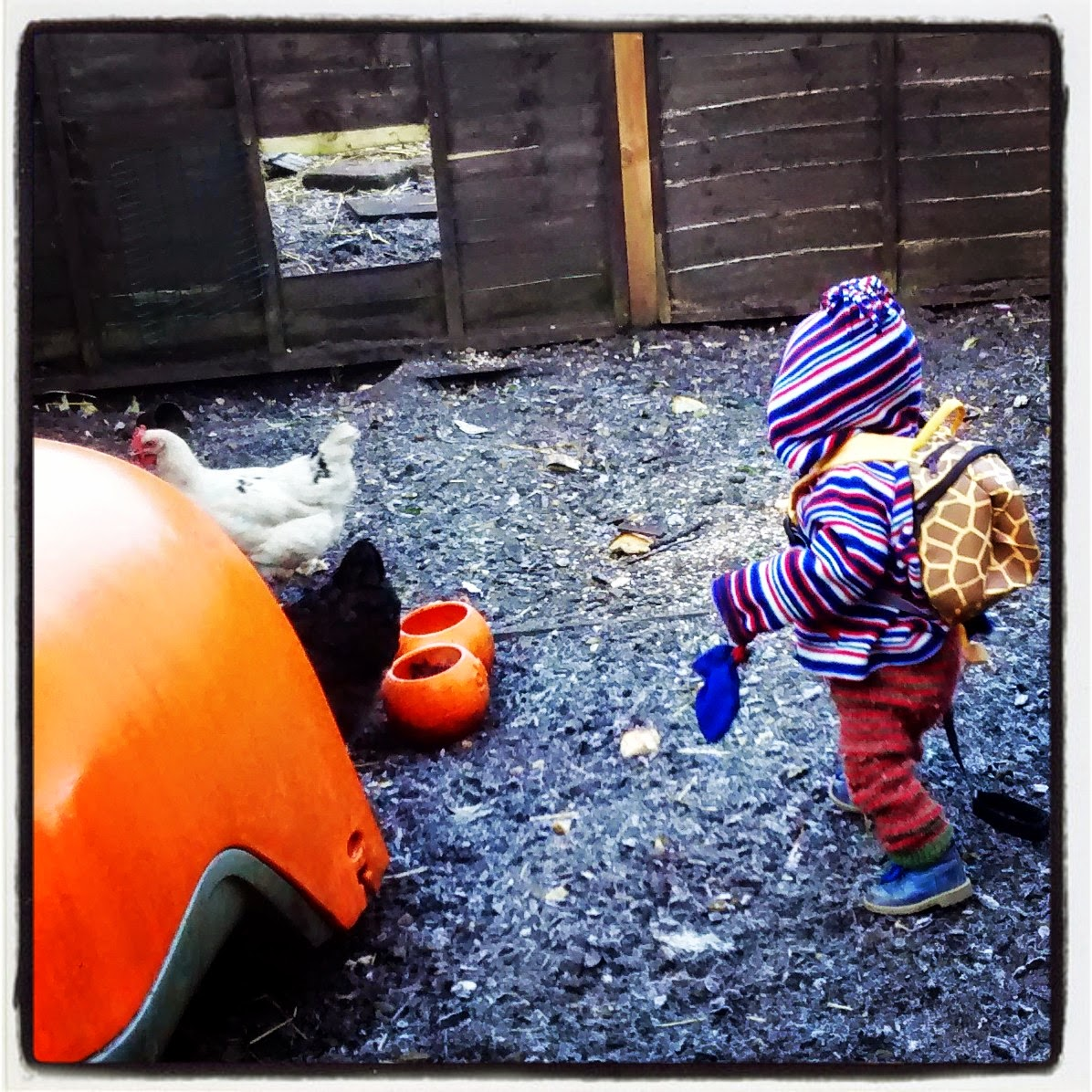 outdoor activities for kids january