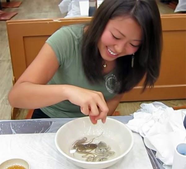 1. Χταποδάκια (Κορέα)