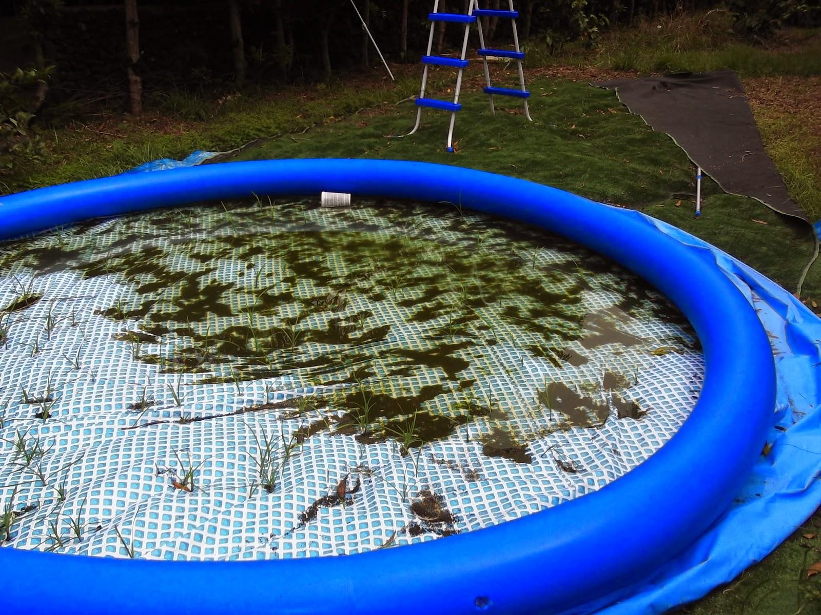 piscina desmontable problemas