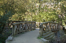 foot bridge
