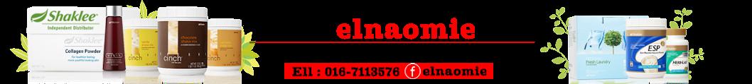 www.elnaomie.net