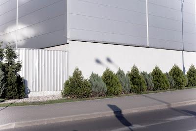 |1/2000|f5.0|50mm|ISO 160|