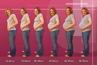usia kehamilan 7 bulan