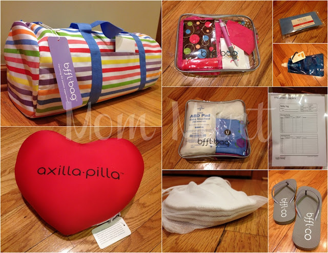 BFFL Co. Mommy Delivery BFFL Bag