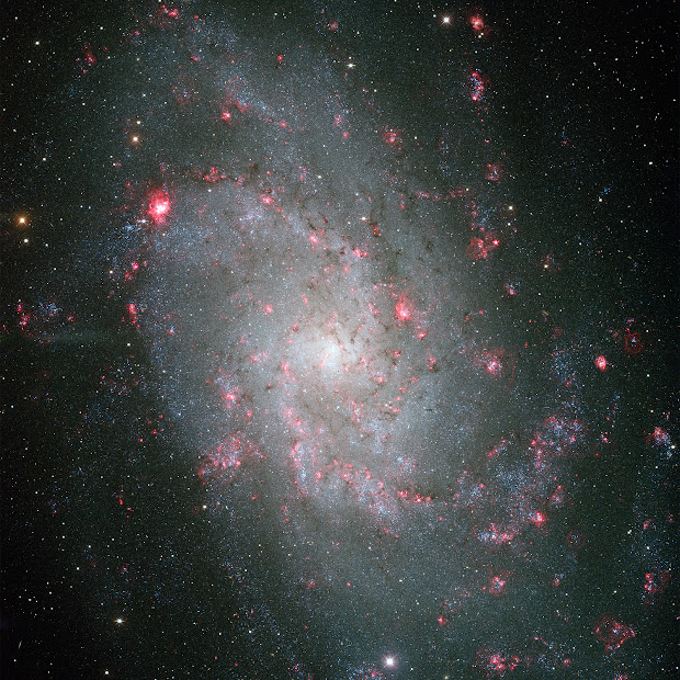 M33, the Triangulum Galaxy, by the Mayall 4-meter telescope