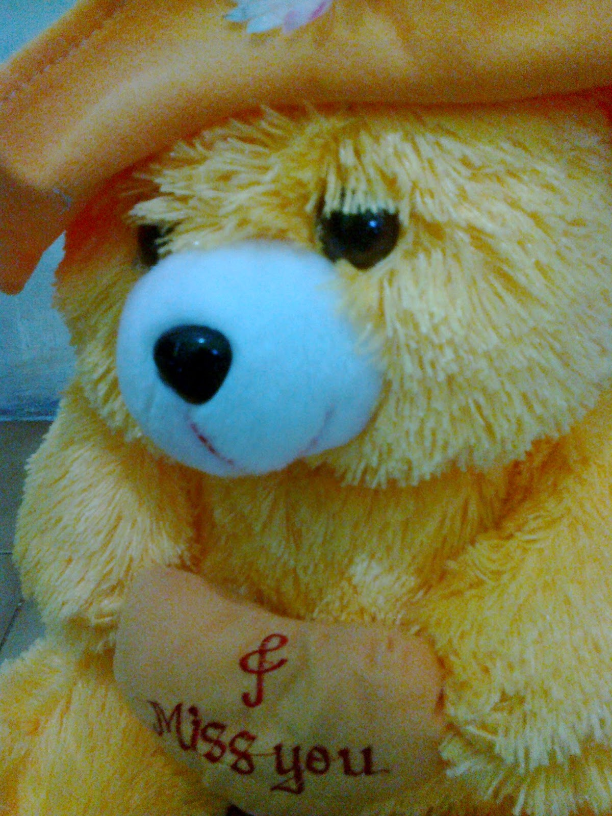 Wallpaper Lucu Beruang Terbaru Gambar Dp Bbm Boneka Jumbo Loved Kumpulan Teddy Bear