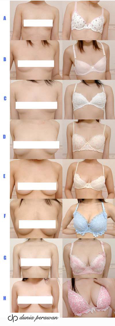 фото голой груди 0 размера