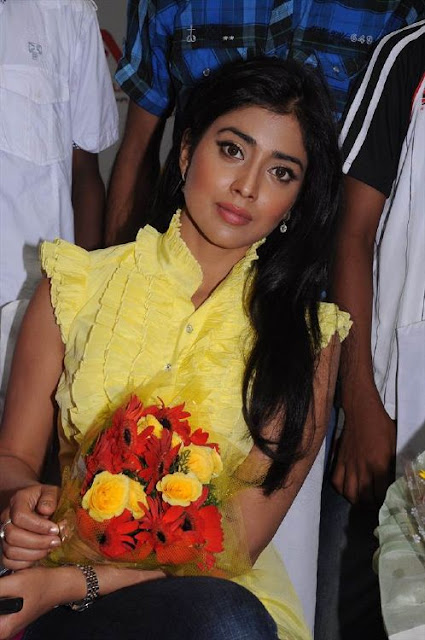 Shriya Saran Yellow Dress Stills