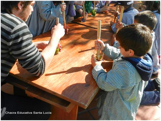 Extrayendo pigmentos con morteros de caña - Chacra Educativa Santa Lucía