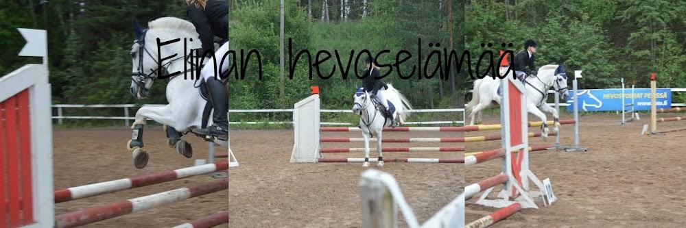Elinan Hevoselämää