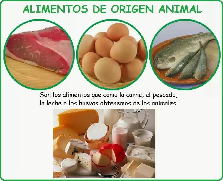 alimentos de origen vegetal, alimentos de origen animal