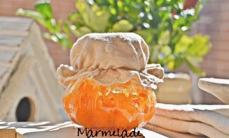 Marmellata d'arance con Stevia
