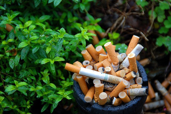 Harmful Effect of Cigarette To Environment