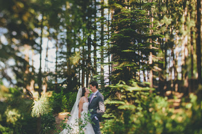Lakeside wedding ceremony & reception at the Gatekeeper's Museum Tahoe l Sun + Life Photo l Johnny B Video l Take the Cake Event Planning