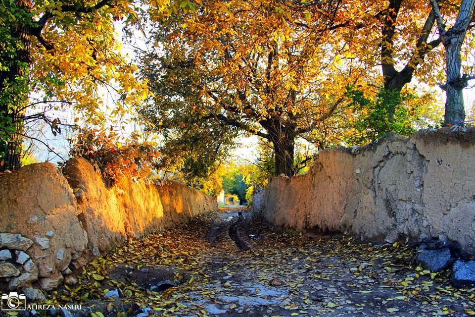 کوچه باغ، بوی برگ ها پاییزی، بوی گردو