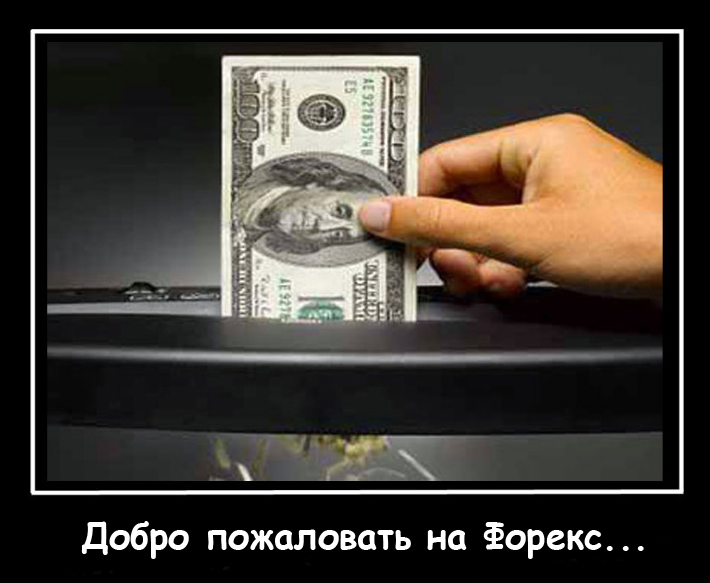 Автоматическая торговля на форекс и снова спускаем деньги