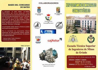 Oviedo Programa