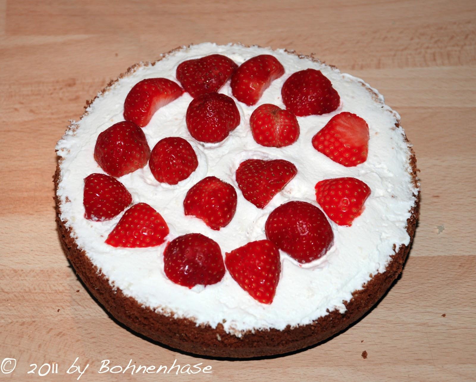 Best Springform Cake Tin
