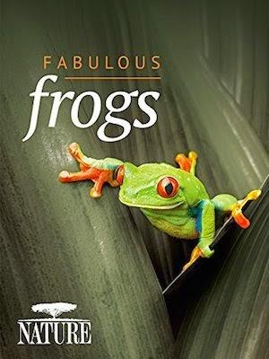 Watch Nature Fabulous Frogs (2014)