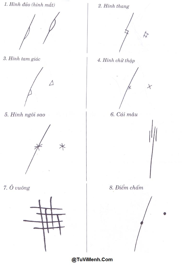 8 ký hiệu cơ bản trên bàn tay thường xuất hiện nhất