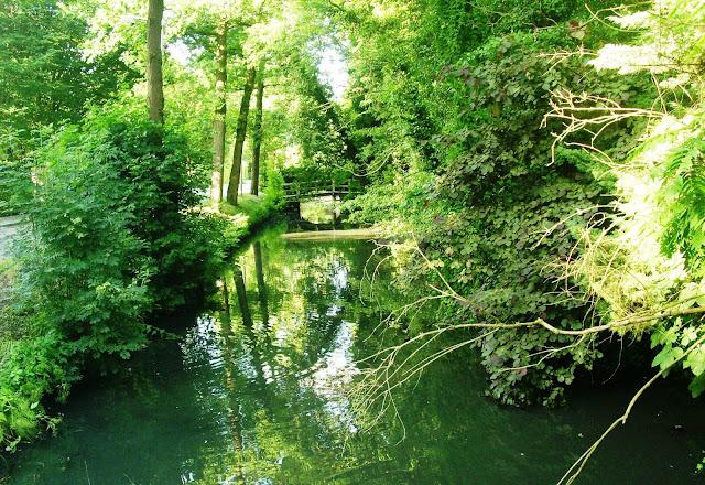 Zeist woods, Utrecht, Netherlands