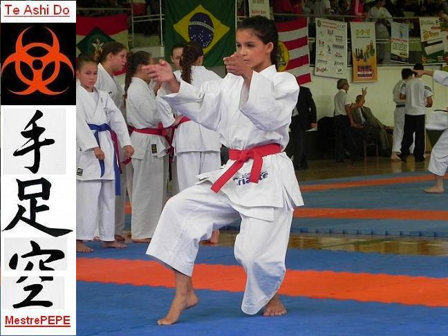 Te Ashi Do, Karate Do, Kung Fu y KobuDo. Por Arno Éder