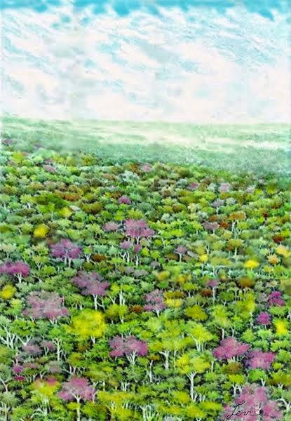 Cores da floresta