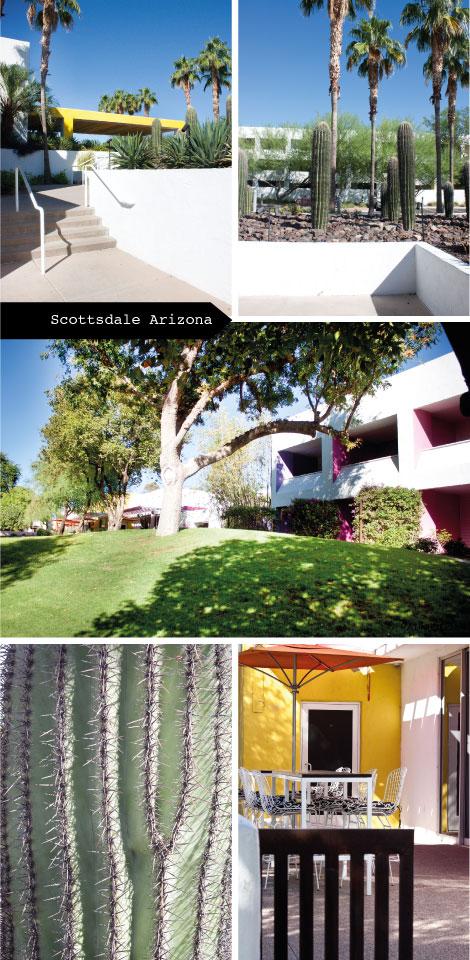 Hotel Saguaro - Reisetipps für Scottsdale