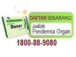 Mari Derma Organ