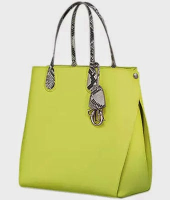 shopping bag da Dior Addict