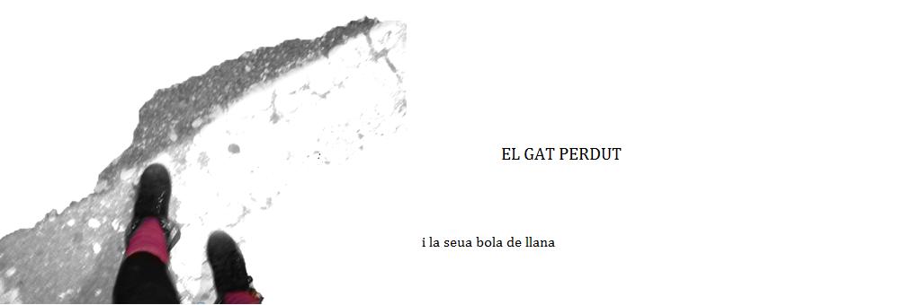 el gat perdut