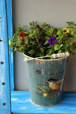 DIY Regal und Balkonbepflanzung