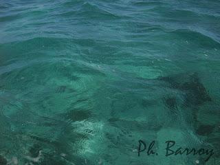 paysages du Mexique Sian Ka'an mer blog photo voyage yucatan