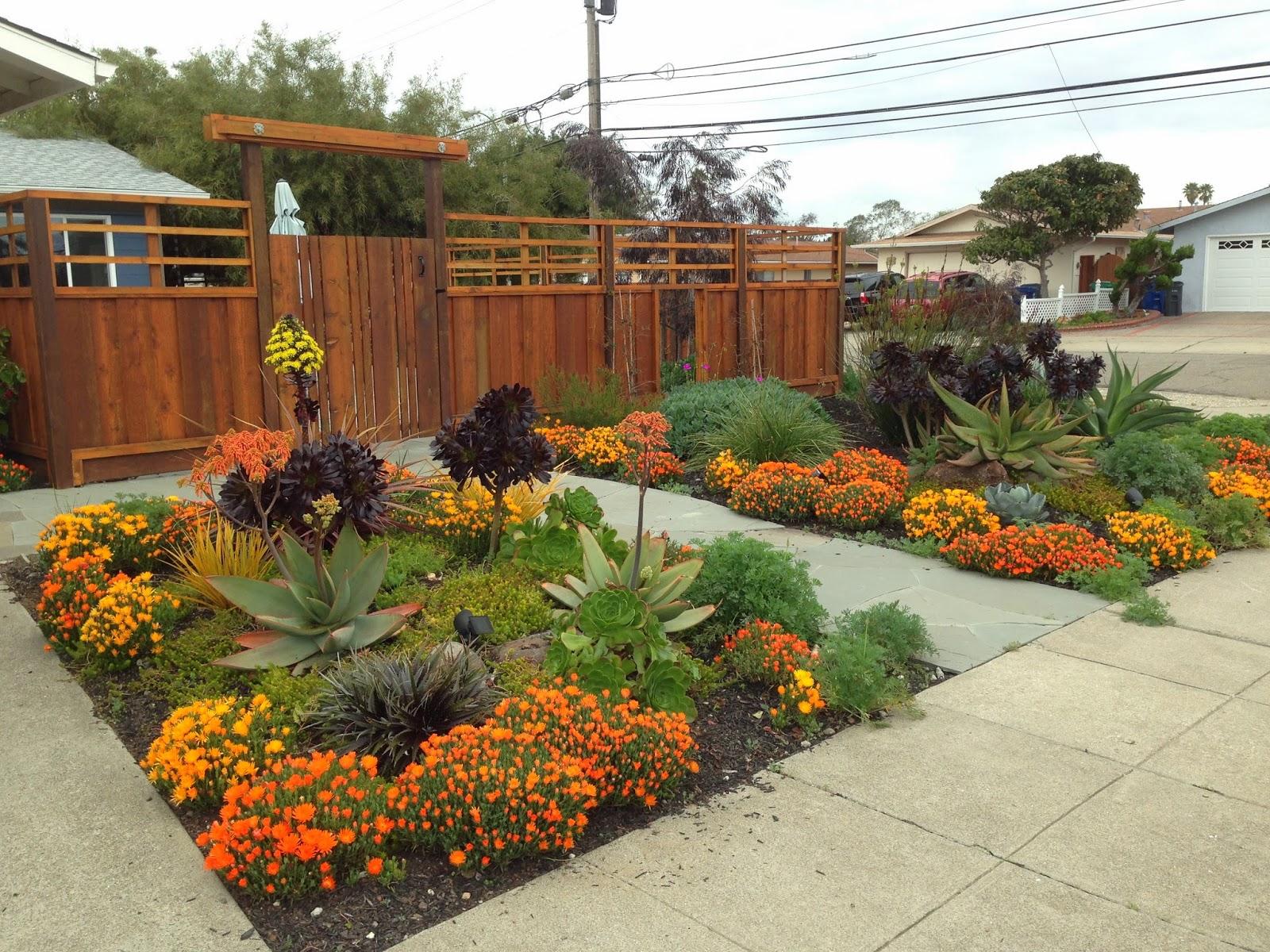 Farallon Gardens Alameda Drought Tolerant Garden