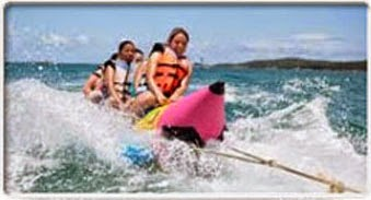 http://www.balivacationtours.com/snorkeling-turtle-island/