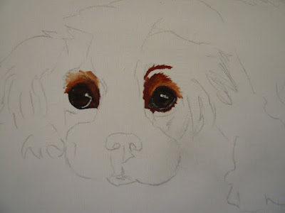 dog oil painting of a spaniel in progress