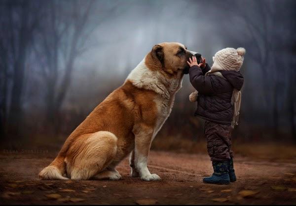 gambar anak dan anjing terbaik .... pose foto anak dengan hewan...