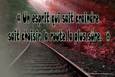 citation latine
