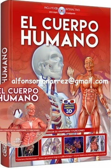 EL CUERPO HUMANO