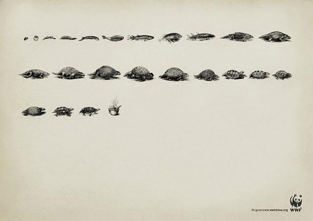 animal-advertising-4