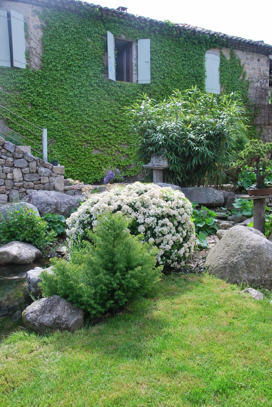 Le violon des ruisseaux jardin japonais for Le jardin des 6
