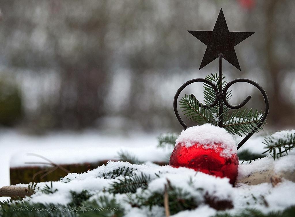 kinder gedichte welt wenn die weihnacht kommt. Black Bedroom Furniture Sets. Home Design Ideas