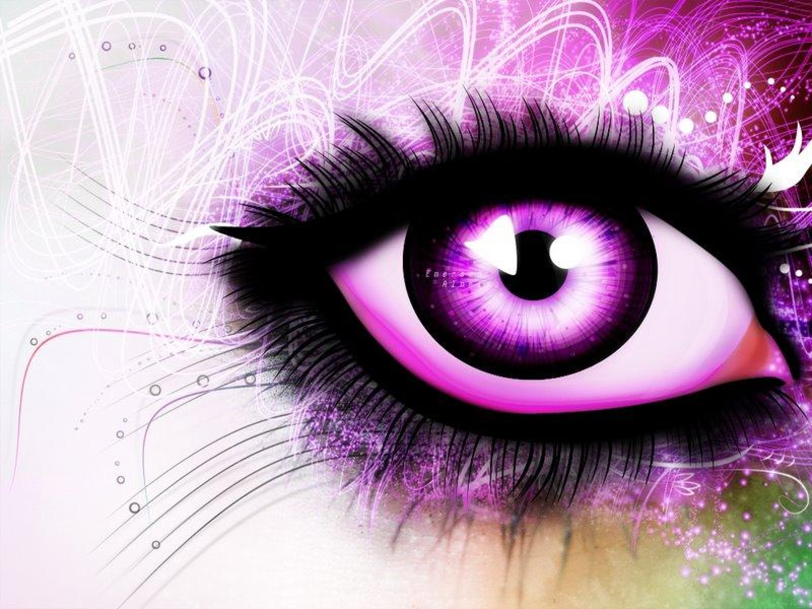 Love Eyes Hd Wallpaper : Paarse Achtergronden HD Wallpapers