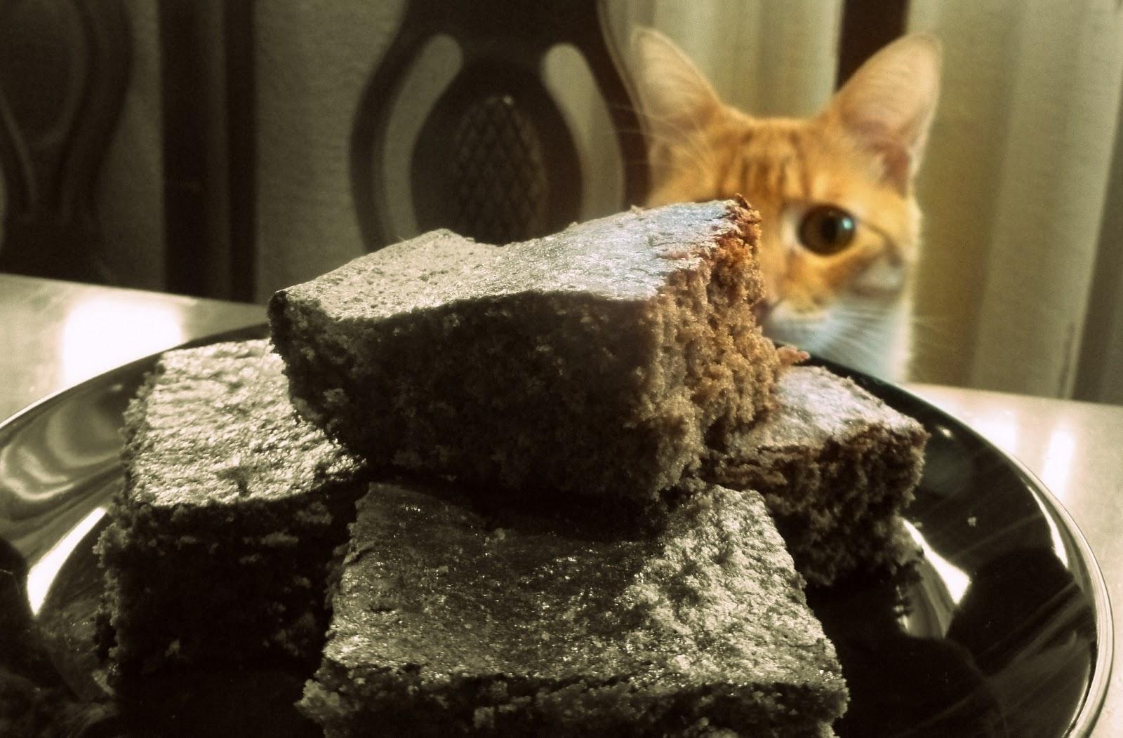 Jerome mirando el bizcocho