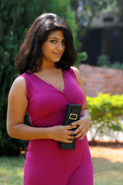 supriya at sashesham pressmeet, supriya glamour  images
