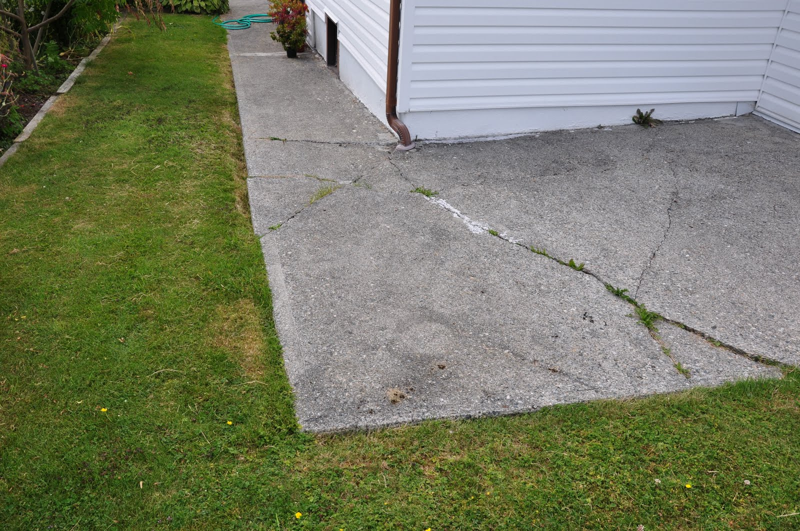Thistle garden around the house for Drainage around house