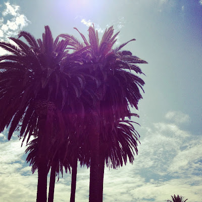 california palm trees by cutandchicvintage on instagram