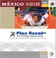 PLAN ANUAL DE TRABAJO DGEF 2010-2011