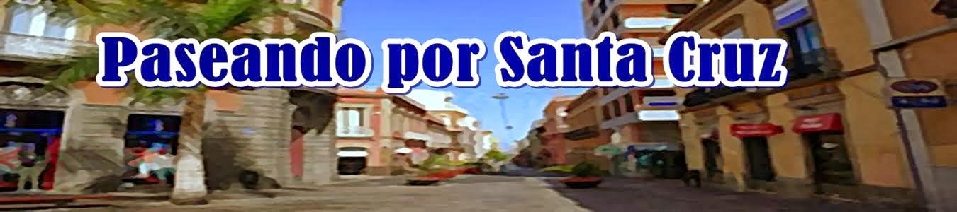 Paseando por Santa Cruz