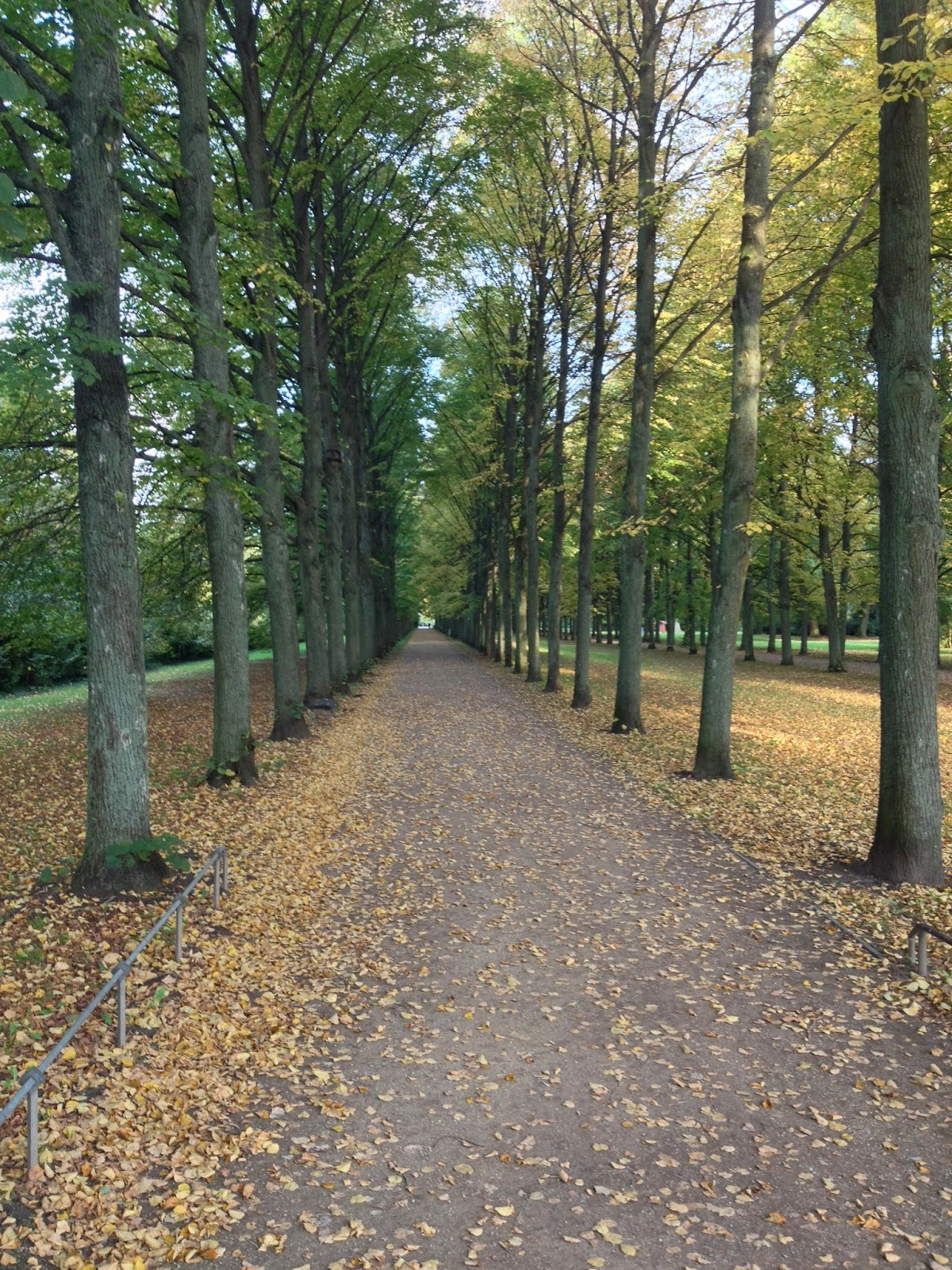 Allee, Park, Bäume